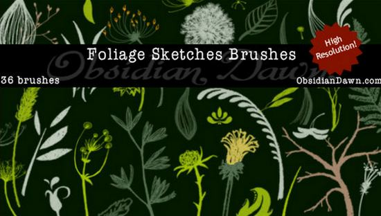photoshop_floral_brushes_64.jpg