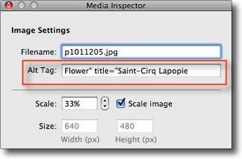 A Super Simple Way to Make Images Accessible: Alt Text versus Title Explained