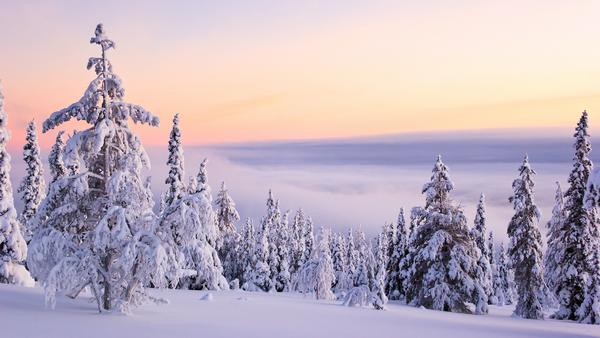 snow_and_winter_wallpapers_11.jpg