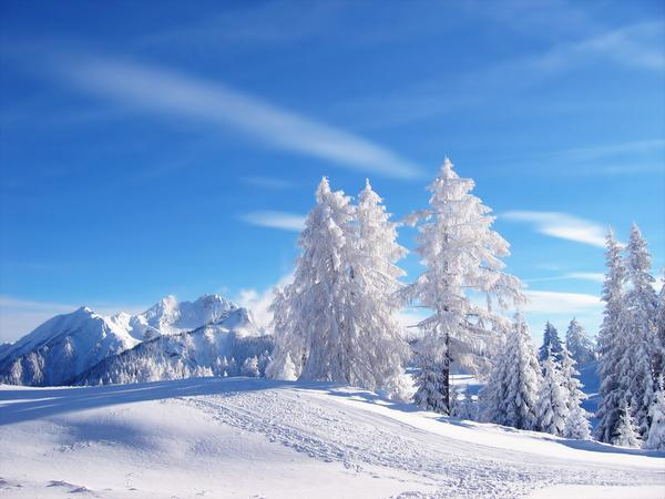 snow_and_winter_wallpapers_15.jpg