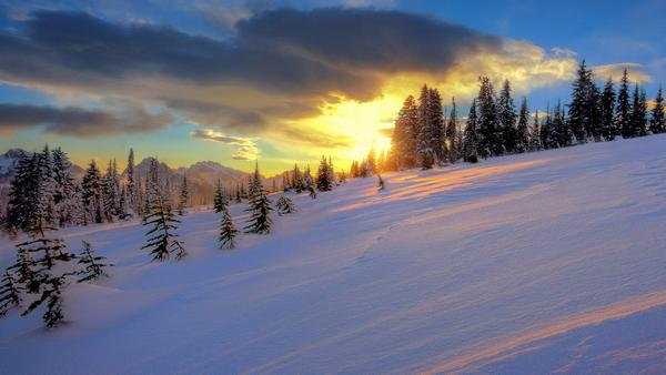 snow_and_winter_wallpapers_22.jpg