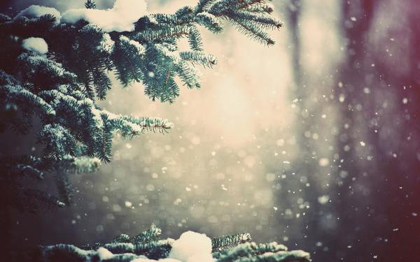 snow_and_winter_wallpapers_31.jpg