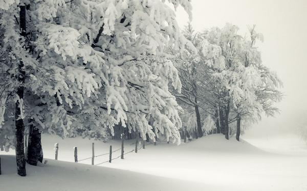 snow_and_winter_wallpapers_35.jpg