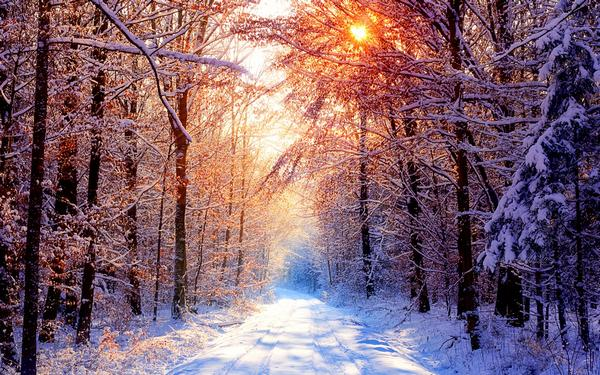 snow_and_winter_wallpapers_4.jpg