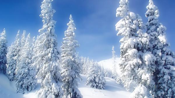 snow_and_winter_wallpapers_40.jpg