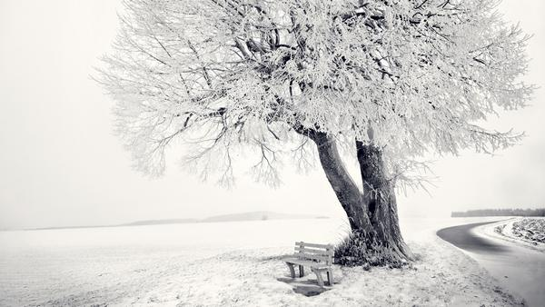 snow_and_winter_wallpapers_9.jpg