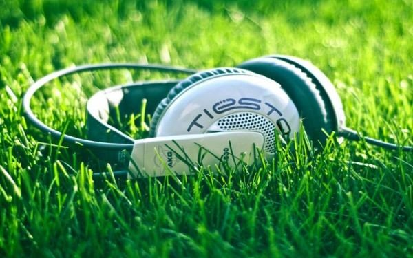 25-grass-headset-green-photography-600x375.jpg