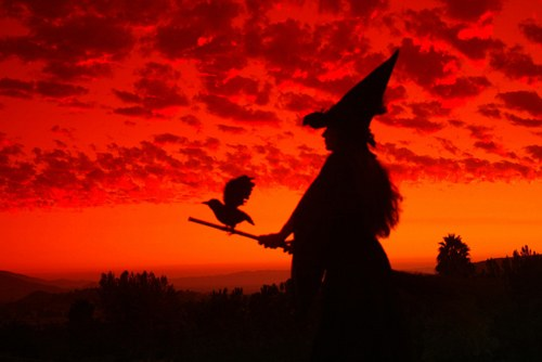 02-Witch_Silhouette_by_primalx.jpg