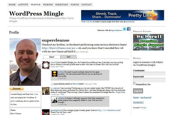 mingle wordpress social pugin