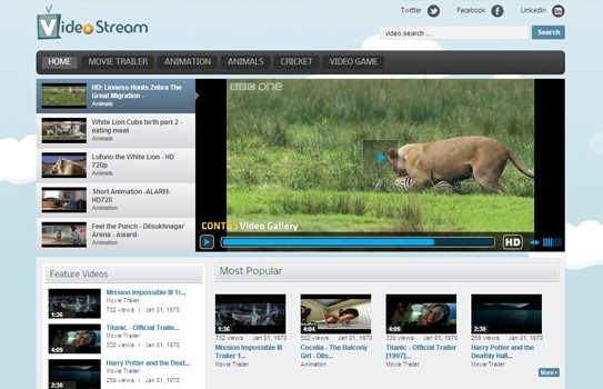 free_wordpress-video-stream_theme