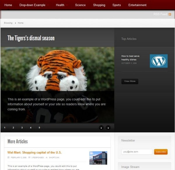 newstheme_free_wordpress_themes