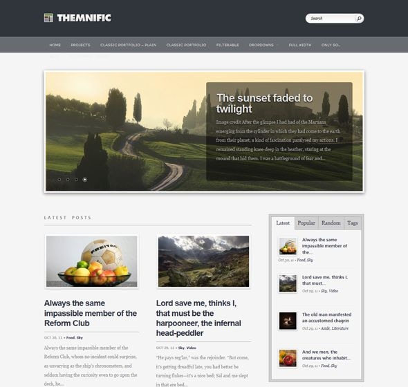 themnific_free_wordpress_magazine_theme