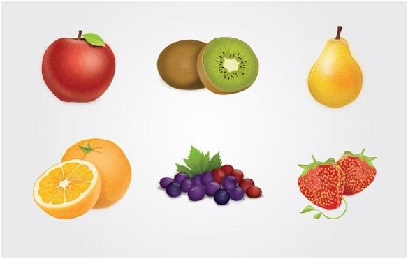 food_vector_graphics_collection_2