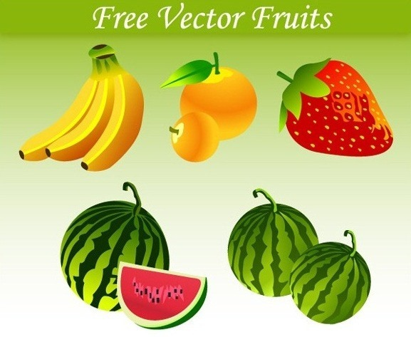 food_vector_graphics_collection_29
