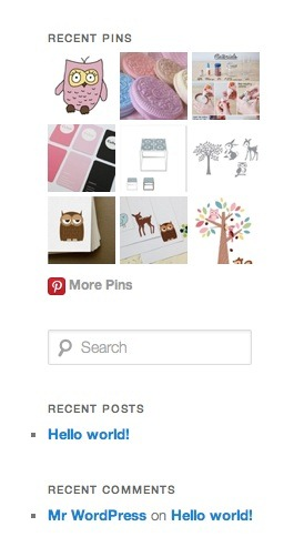 pinterest_pinboard_widget_pinterest_plugins_for_wordpress
