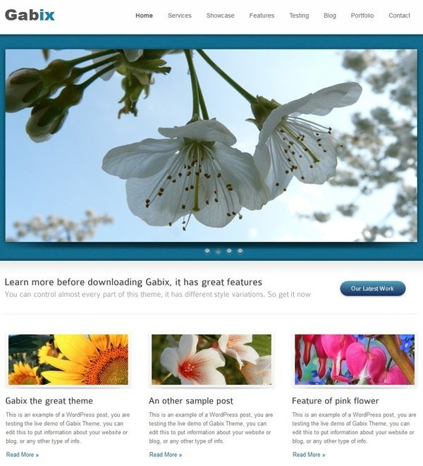 gabix_wordpress_professional_business_themes