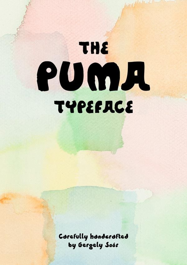 brochures_booklets_stunning_typography_01_puma