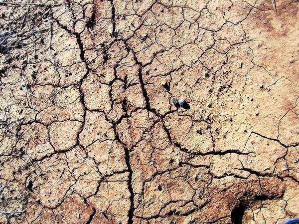 cracked_earth_stock_texture_by_futuregrrl-d4w7i9z