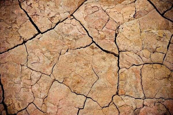 cracked_mud_texture