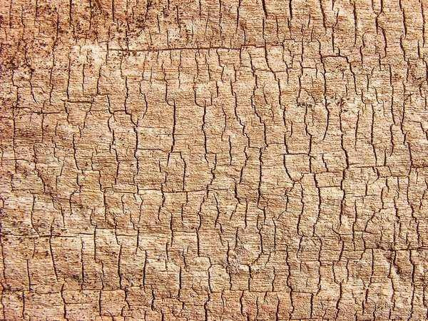 wood_texture_v1_by_hungarou-d4w7qle